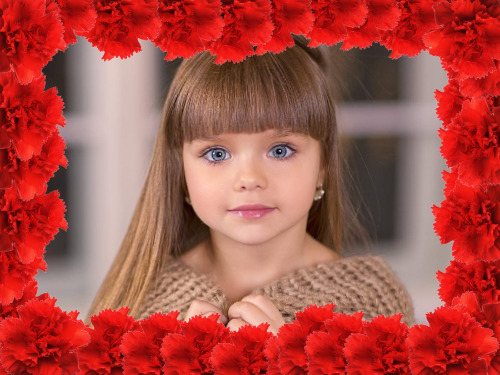 moldura rosas vermelhas
